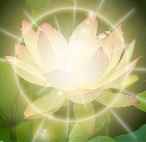 Luna piena in Anuradha: la stella del successo e della crescita spirituale+ Vesak