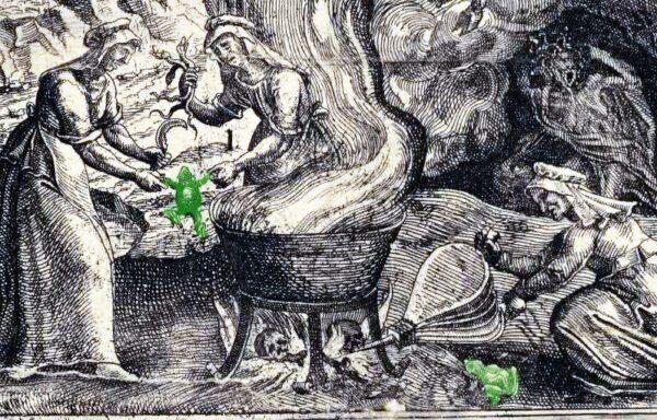 Cosa significa vedere un rospo: simbolo, significato, totem. Leggende sulla Dea-madre rospo, streghe e sciamani
