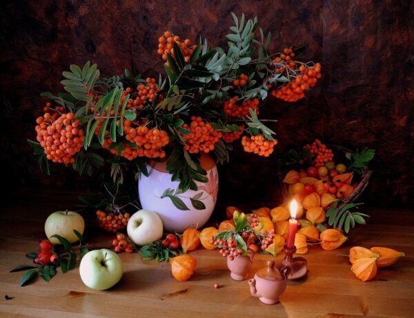 Sei piante che non possono mancare nel tuo giardino autunnale
