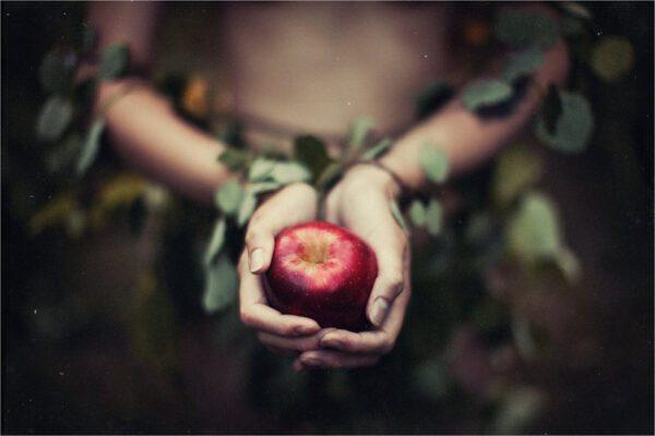 Il significato simbolico della mela: il frutto della Dea Madre e della misteriosa Avalon che nutre gli spiriti