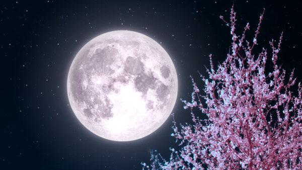 Luna piena in Swati 27 aprile: abbracciare i venti del cambiamento